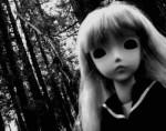 noahs doll